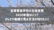 宝塚音楽学校の合格発表2020年度はいつ?テレビや動画で見る方法が知りたい!